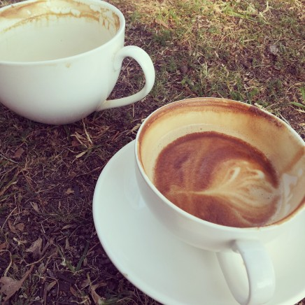 Coffee in the grass
