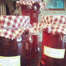 Home made jam from garden picked fruit.